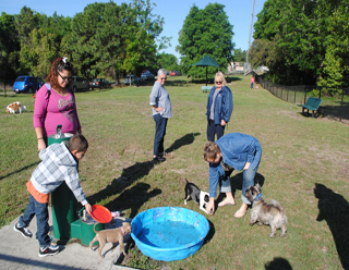 Picture of people and dogs playing at Waggin Trail Dog Park